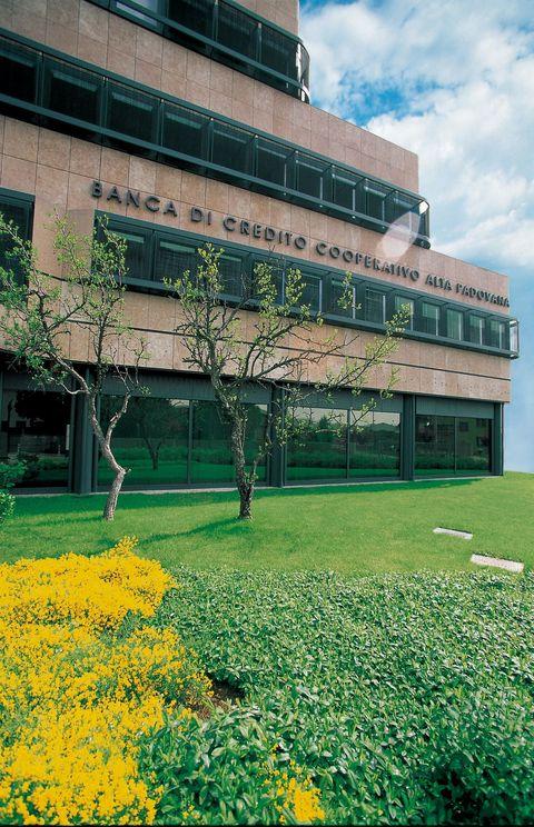 BCCAP 3